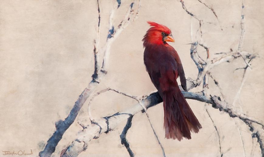 Cardinal post